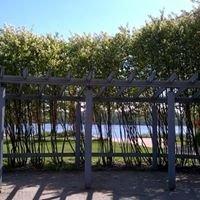 Leikkipuisto Tuorinniemi