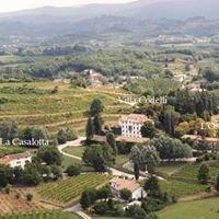 Villa Codelli