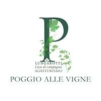 Agriturismo Poggio alle Vigne - Torgiano (Pg)