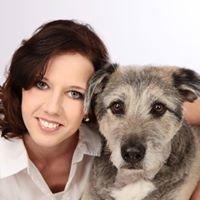 Hund Um Wohl - Hundephysiotherapie