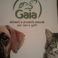 Negozio Gaia