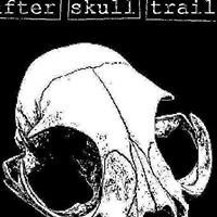 after skull trail