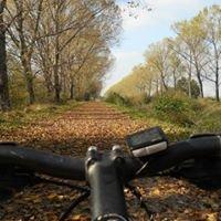 Umbria in Mountain Bike