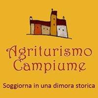 Agriturismo Campiume e Vigne di San Lorenzo