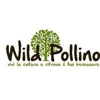 Wild Pollino