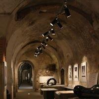 ARKAD Fondazione