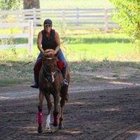 Old English Rancho, Thoroughbred Horses