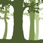 Rucksackschule - naturbezogene Umweltbildung