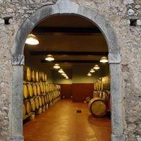 Azienda Agricola L'Arco Antico