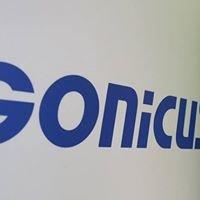 GONICUS GmbH