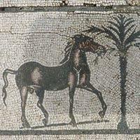 Antiquarium e Area Archeologica di Lucus Feroniae - Capena
