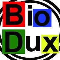 Elokuvateatteri Bio Dux