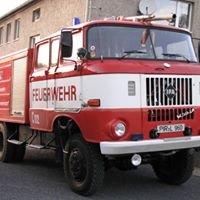 Feuerwehr Langenhennersdorf