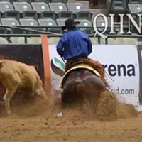Barthelemy Performance Horses
