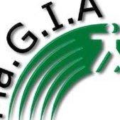 Magia_associazione Guide Turistiche e Naturalistiche delle Marche