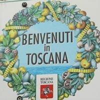 Firenze e Toscana - impressioni della nostra terra