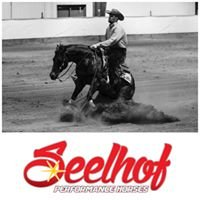 Seelhof Performance Horses