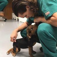 Justin Bartlett Animal Hospital