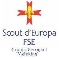 FSE - Perugia1