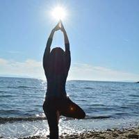 YogaSankranti