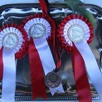 Takkulan talli ja ratsastuskoulu