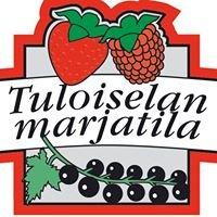 Tuloiselan Marjatila, Kesäkauppa ja kahvio
