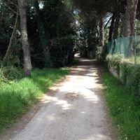 Percorso Verde - Torgiano
