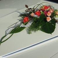 Cadillac  - Hochzeit - Events aller Art