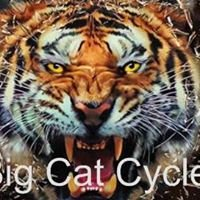 Big Cat Cycle