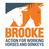 Brooke, Action For Working Horses and Donkeys