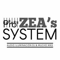 Zea's Pro Systems