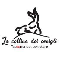 La Collina dei Conigli - birreria/pub/cocktail-bar