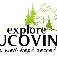Explore Bucovina