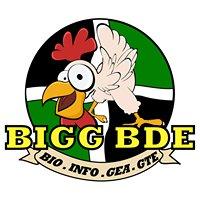 BIGG BDE