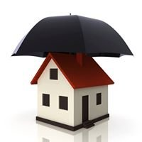 Allena Chong Insurance