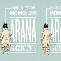 Momo Las Arenas