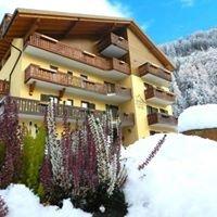 Hotel Cimon Dolomites di Predazzo - Val di Fiemme - Trentino