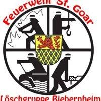 Feuerwehr St. Goar - Löschgruppe Biebernheim