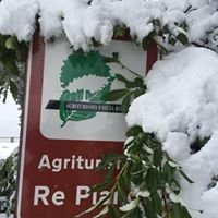 Agriturismo Re Piano - Modigliana