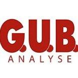 GUB-Analyse