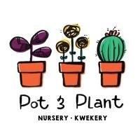 Pot & Plant Nursery