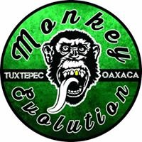 Monkey Volks Tuxtepec