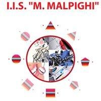 IIS Marcello Malpighi