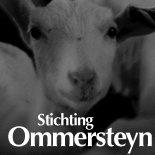 Stichting Ommersteyn