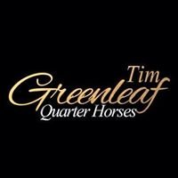 Tim Greenleaf Quarter Horses, home of Double Invitation