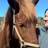 Hevoslaakson talli, ratsastuskoulu