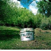 Campo delle Storie di Sadali - Parco Letterario e del Gusto