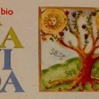 A La Vida - Alimenti Biologici