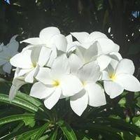 Anahara Spa Key West