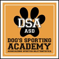 Dog's Sporting Academy